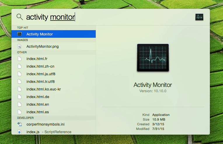 spotlight option on mac to run Activity Monitor